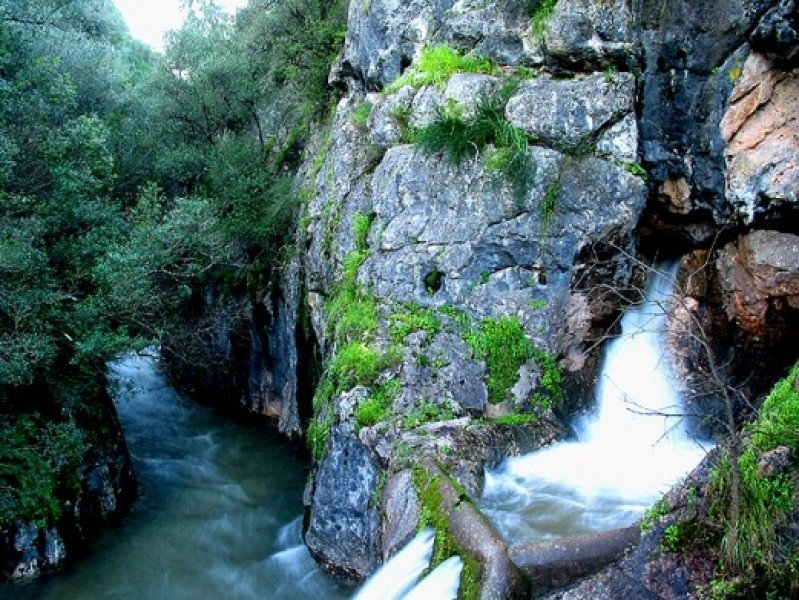 Alviela River Spring